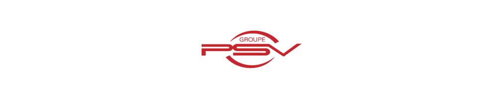 Modèle PSV Groupe